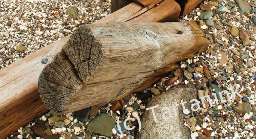 Driftwood Post