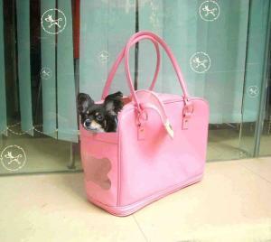 A dog in a bag